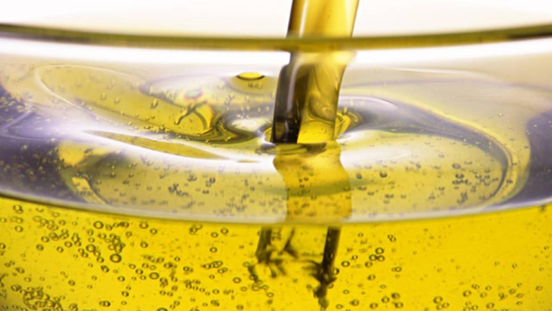 Soldebre arranca la campaña del aceite con la previsión de recoger entre 10 y 12 Mkg de aceitunas